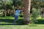 i'm and palm ;-)