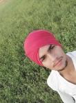 shain aulakh
