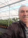 CıNaR, 60  , Istanbul
