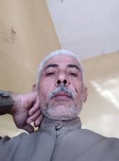 محمد حمدي, 50, Egypt, Al Mansurah