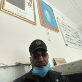 محلي عبد الجليل , 46  , Touggourt