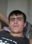 Gayrat, 28  , Almaty