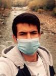 Abu, 20  , Dushanbe
