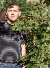 Vitaliy, 42, Russia, Saint Petersburg
