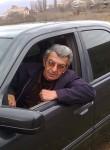 Masis , 65  , Yerevan