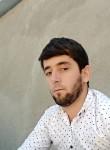 Tolibi, 28  , Dushanbe