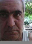 NN, 51  , Sumqayit