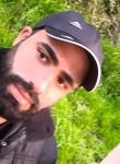 عمار, 31  , Damascus