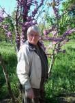 анатолий, 66 лет, Одеса