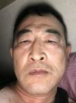 jinzhebing, 55, Kimhae