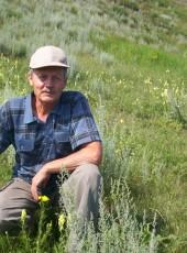 Viktor, 74, Russia, Iskitim