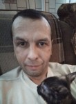 Evgeniy , 41  , Moscow