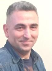 alihaydarveziroglu, 43, Turkey, Istanbul