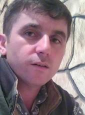 Asaf, 37, Azerbaijan, Baku