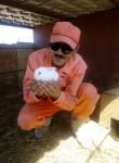 Murad, 53  , Yoloeten
