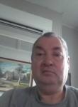 Steve, 63  , Dunedin