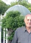 Alex, 65  , Tallinn