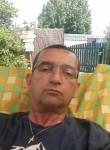Alain, 56, Montelimar