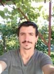 Adrian Bamboi, 31  , Ploiesti