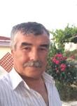 gurbetci, 60  , Ankara