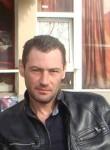S K O R I K, 40  , Pokrovskoye (Rostov)