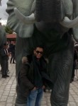 Yassine, 30  , Algiers
