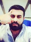 Valodik, 32, Yerevan
