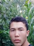 Bobur, 20  , Tashkent