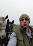 David, 33  , Komarno