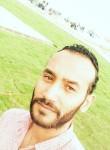 Shady, 33  , Ismailia