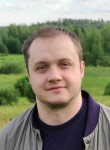 Ilya, 36, Solnechnogorsk