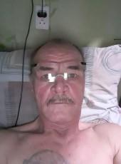 Vladimir, 59, Russia, Gubakha