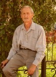 dmitriy, 67  , Dalmatovo