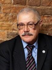 Pavel, 74, Russia, Saint Petersburg