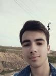 Şerwan, 20  , Ribnita