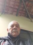 GENIVAL ALFREDO , 64  , Osasco