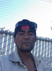 Nashoba , 50, United States of America, Stockton