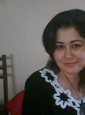 Sado, 40, Uzbekistan, Navoiy