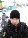 Ilf, 40  , Nizhnekamsk
