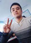 tanishaman, 25  , Wobkent