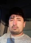 UMID, 34  , Karakul