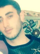 Vito, 28, Armenia, Yerevan