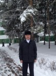 Ilyas Ibragimov, 62  , Almetevsk