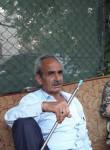 Fikri, 55  , Ankara