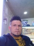 Prisacariu const, 34  , Foggia