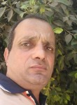 شعبان, 47  , Cairo