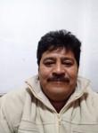 Alejandro plata, 50  , Ciudad Lopez Mateos