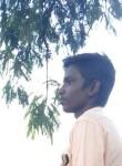 Rajadurai, 18  , Tiruttangal