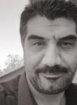 Kemal, 49  , Greve