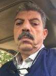 Hazem, 57  , Cairo